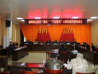 大化县:合力调解山林纠纷促和谐