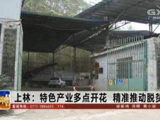 上林县:特色产业多点开花 精准推动脱贫攻坚
