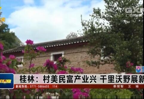 桂林:村美民富产业兴 千里沃野展新颜