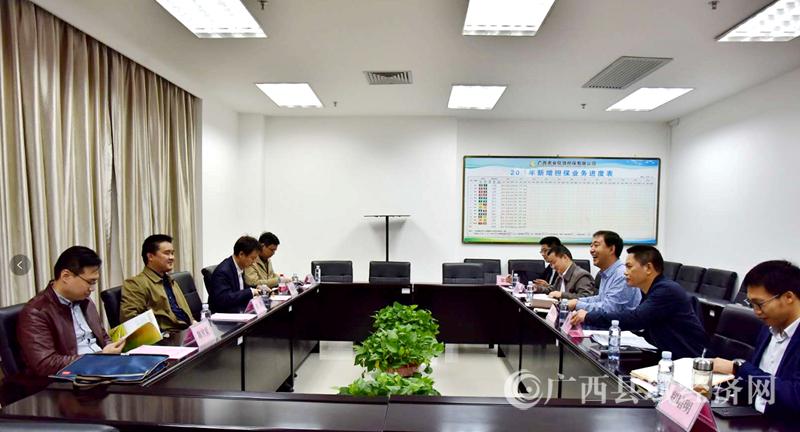 自治区地方金融监管局刘辉副局长率队到广西农担公司调研指导