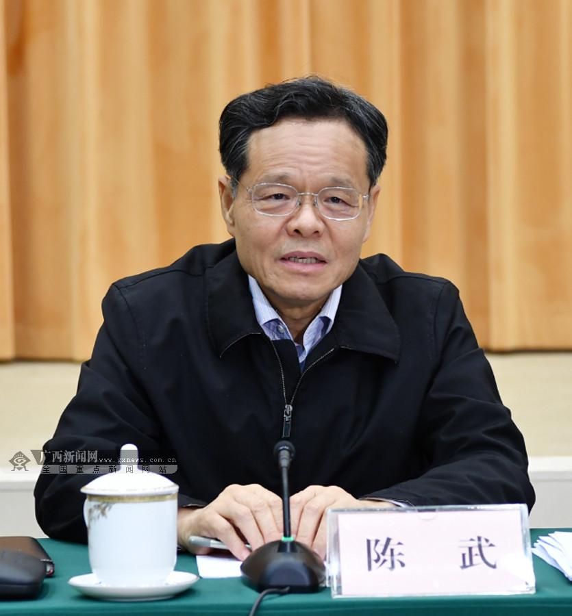 陈武:打造带动我区高水平开放高质量发展牵引工程