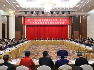 广西代表团审议全国人大常委会工作报告 鹿心社陈武等参加审议