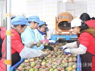 北流联社:加大支农力度 助力乡村振兴