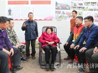 凌云县:一位百岁老党员的特殊党费