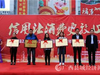 """南丹县举办""""3.15国际消费者权益日""""纪念活动"""