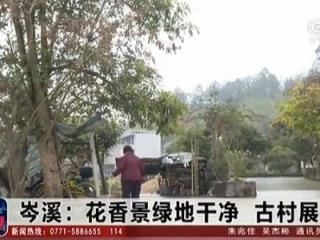 岑溪市:花香景绿地干净 古村展新颜