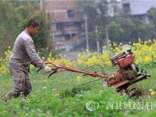 融安县:小农机 助春耕