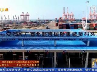 广西:借力西部陆海新通道 进出口贸易迎来新发展