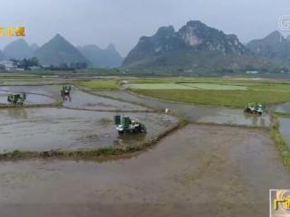 广西:农机补贴力度全国第一 主要作物综合机械化水平超59%