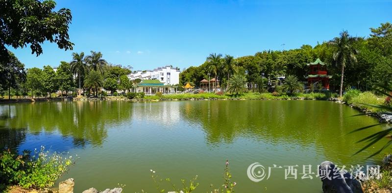 浦北县乡村风貌提升三年行动侧记:春风催开花千树