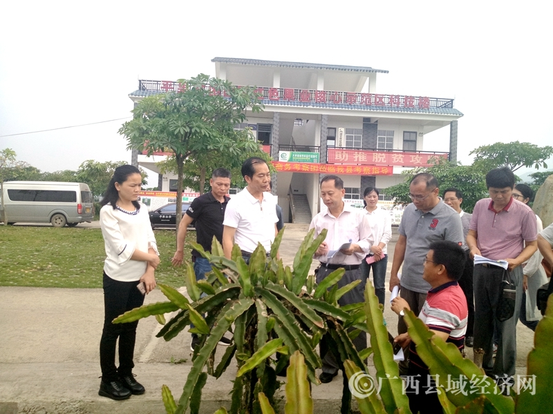 平果县:自治区专家组到该县开展农业科技园区核验工作