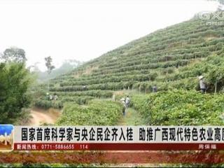 国家首席科学家与央企民企齐入桂 助推广西现代特色农业高质量发展