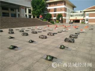 平桂区:2019年民兵应急连点验大会顺利召开