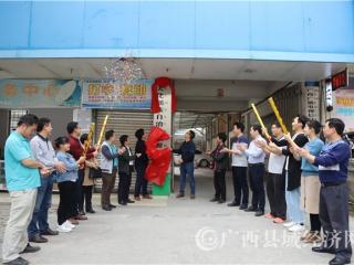 大化举行县级融媒体中心揭牌仪式