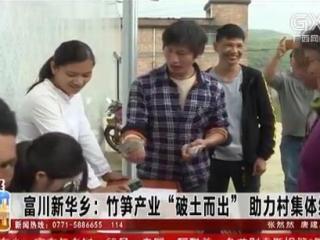 """富川新华乡:竹笋产业""""破土而出"""" 助力村集体经济发展"""