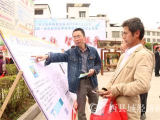 环江:社保政策大宣传  为民解惑获好评