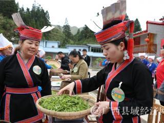 金秀县:50多名采茶女上演采茶技能大比拼