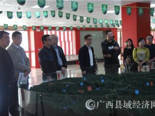 自治区党委网信办领导到大化县开展网络扶贫试点示范工作调研