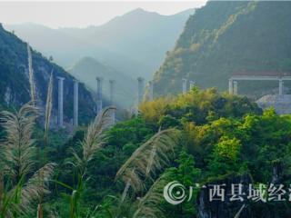 凌云县:乐百高速公路建设如火如荼
