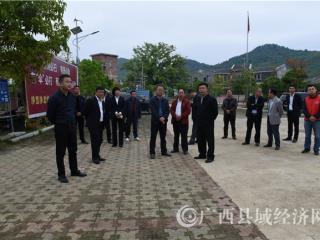 昭平县委书记刘飞国到黄姚镇北莱古村落调研