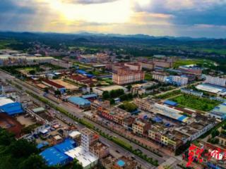灵山县:2019年县域经济因甜蜜产业实现开门红