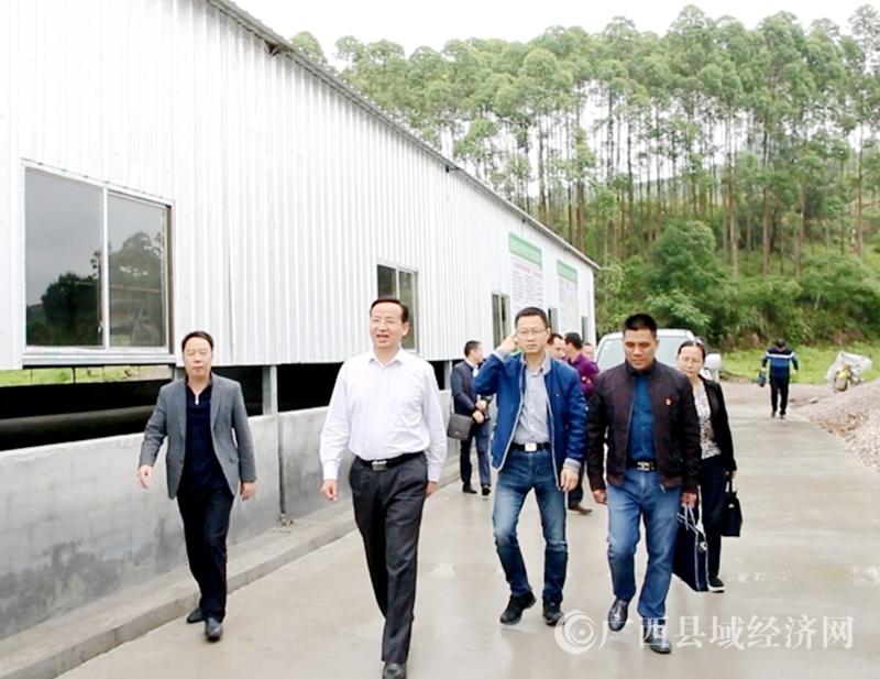 柳州市副市长朱富庭考察融安县桑蚕产业