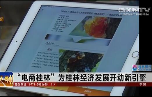 """""""电商桂林""""为桂林经济发展开动新引擎"""