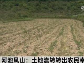 凤山县:土地流转转出农民幸福生活