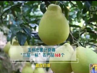 """玉林:""""农业大市""""向""""农业强市""""跃升进行时"""