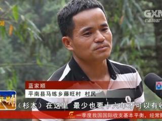 平南县:脱贫路上不等不靠 幸福生活双手创造