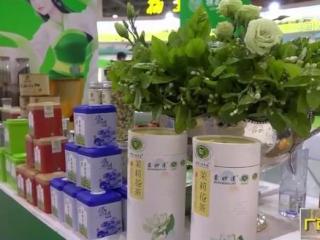 横县:茉莉花全新亮相第三届中国国际茶博会 签约项目超9亿元