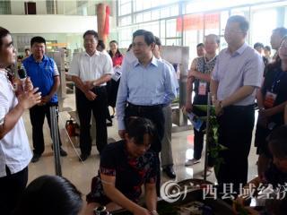 驻桂全国人大代表和自治区人大代表到平桂区开展专题调研