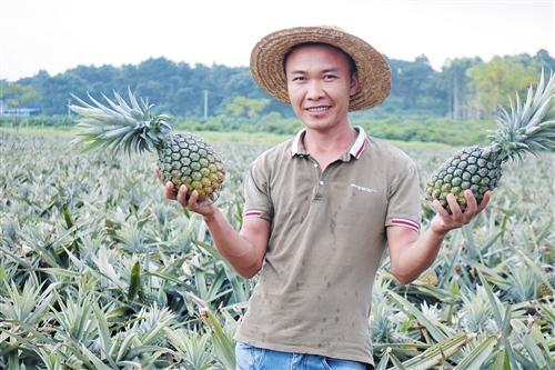 上林县:政策扶持有保障 带贫致富有成效