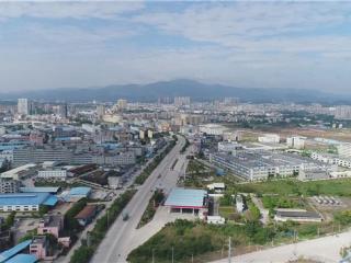 容县:产业结构巧变换  千年容州翻新貌