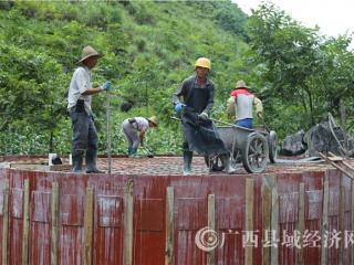 大化县:加快推进家庭水柜建设