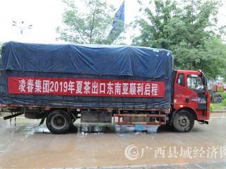 凌云县:2019年第一批白毫茶出口东南亚国家