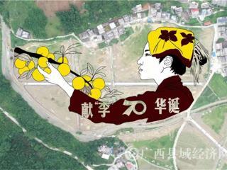 南丹县:小田变大田 拥里村迎来农业大转型
