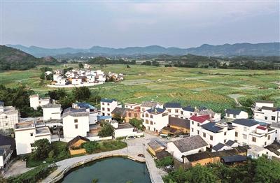 鹿寨县:经济社会发展的历史性成就回顾