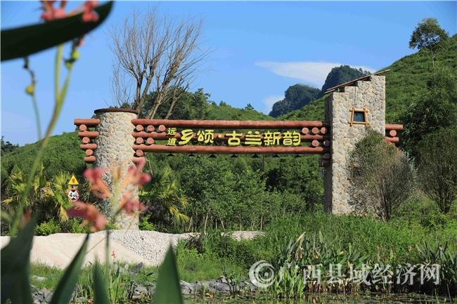 """融安县:复苏的""""空巢村""""——古兰屯的新生"""