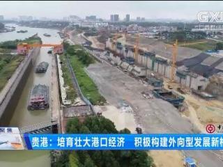 贵港:培育壮大港口经济 积极构建外向型发展新格局
