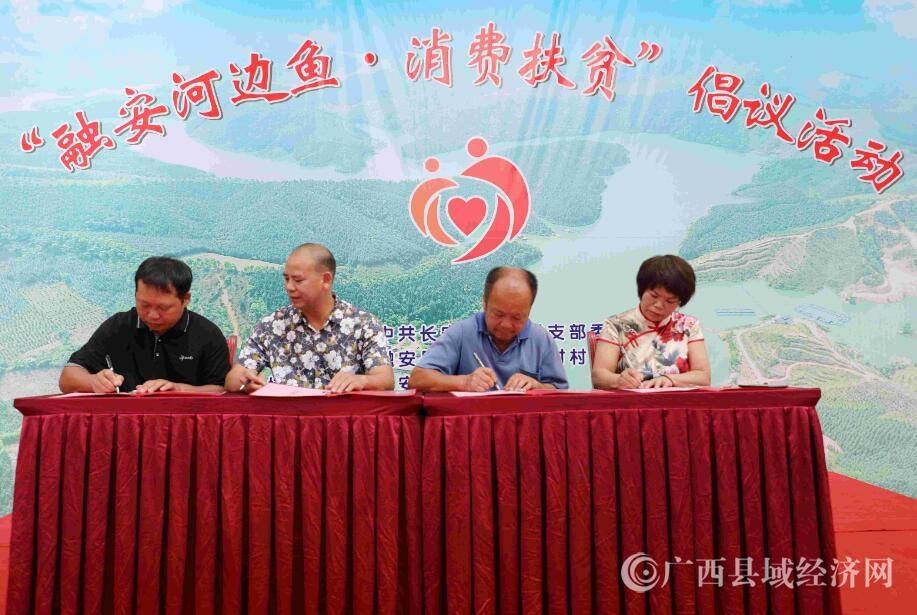 """融安县:长安镇举行""""融安河边鱼・消费扶贫""""倡议活动"""