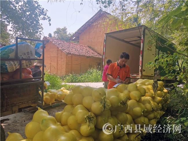 环江县:拓宽销售渠道 促进农民增收