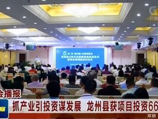 龙州县:抓产业引投资谋发展 获项目投资66.68亿元