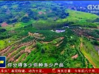 """环江县: """"肯福模式""""成为易地搬迁科技扶贫典范"""