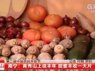 南宁:青秀山上说丰年 甜蜜丰收一大片