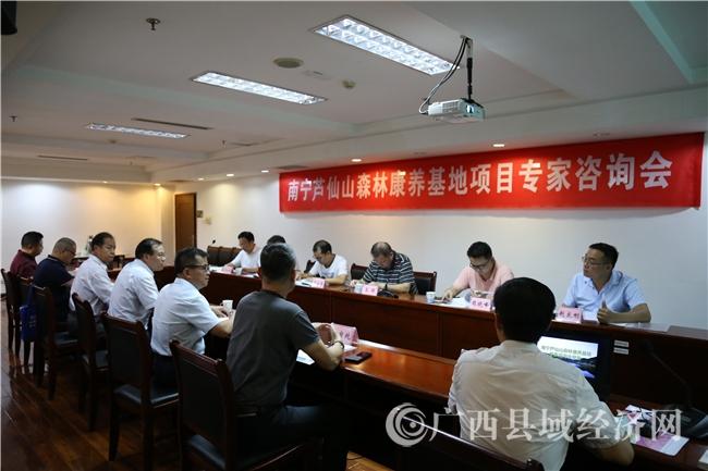 广西县促会、乡村产业联合会召开芦仙山项目专家咨询会