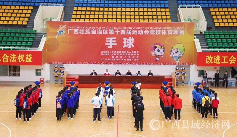 自治区第十四届运动会凌云赛区手球比赛开幕