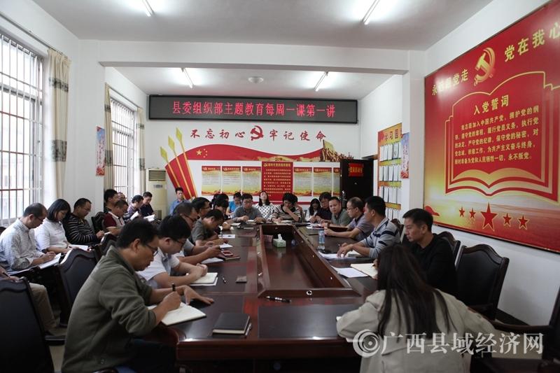 """罗城县委组织部""""三依托三强化""""推进主题教育出实效"""
