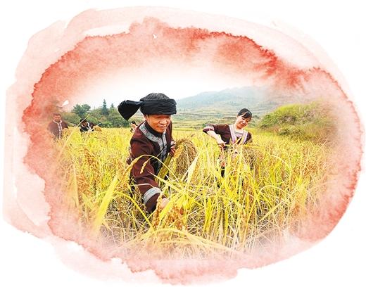 """龙胜县:""""国家地理标志""""富硒农产品展示"""
