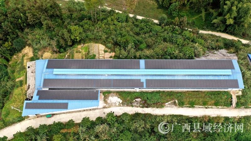 金城江:光伏发电惠贫困山村 增加村集体收入约155万元